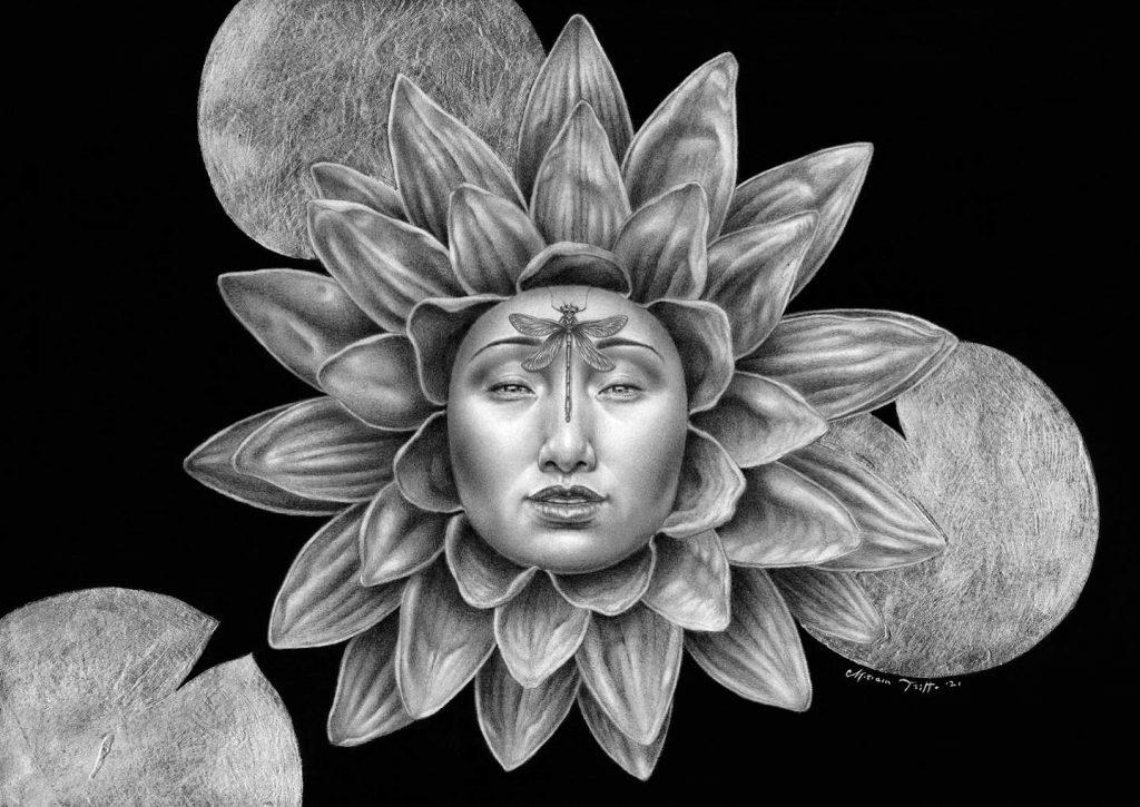 Lotus rebirth, graphite and charcoal drawings